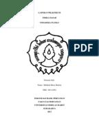 Jurnal minyak atsiri pdf
