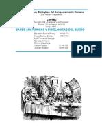 Informe_El_Sueño_Grupo_2_Bases_624 (1)