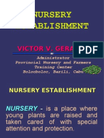 Nursery Establishment