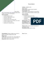 proiectdidactic_grupacombinata.doc