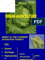 Urban Agriculture With 3 Ways of Composting March 9, 2007