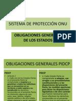 DDHH Sistema ONU Proteccion 2