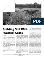 "Building Soil With ""Wasted"" Grass"