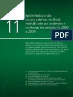 Cap 11 Saude Brasil 2010