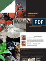 Tremendous Tricolors 2013 Price List