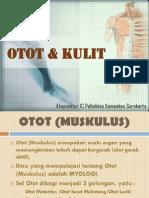 Ppt Anatomi Otot & Kulit