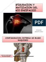Configuracion y Sistematizacion Del Tronco Encefalico