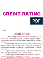 Credit-Rating 42 SLIDES