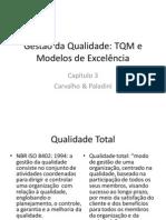 capítulo_3_-_gestão_da_qualidade_-_carvalho_&_paladini