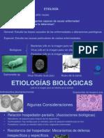 etiologia10