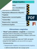Patologia Hepatica 2009-10