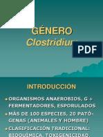 Clostridium 06