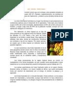Trabajo Frutas Tropicales.docx