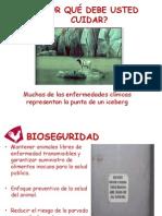 Bioseguridad  Produccion