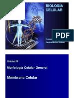 Clase 04 - Membrana celular y Transporte.pdf