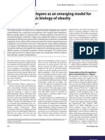 c Elegans Model Basic Biology Obesity