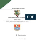 Perfil de Pre Inversion - Laredo