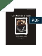 Henrique Carneiro2