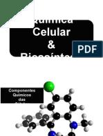 Energia Livre e Componentes Quimicos 1