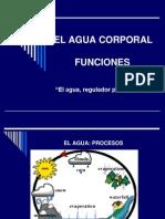EL AGUA 2010-I