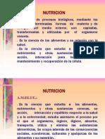 NUTRICION-FASES