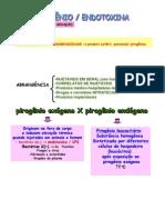 +++++Pirogênio-Endotoxina