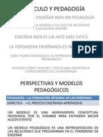 CURRÍCULO Y PEDAGOGÍA-AUGE