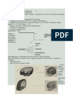 Imagenologia – RNM.doc