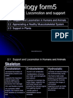 20587313 Biology Form5 Locomotion and Support
