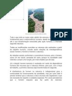 texto de língua portuguesa.docx