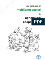 Mobilizing Capital