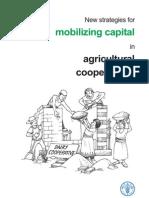 Mobilizing Capital
