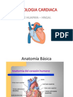Fisiologia-Cardiaca.pps