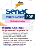 Impactos Ambientais-Introdução