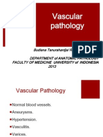 PA - Vascular Pathology 2013