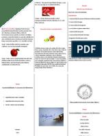 Importância das Frutas Vermelhas 2