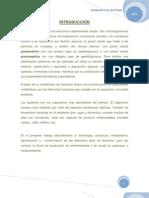 Microbiologia Taller 1 Seminario n 01