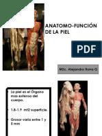 Clase de Piel y Anexos Cutaneos 2013.pdf