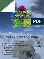 RELACIONES_ECOSISTEMICAS