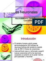 52938191-Redes-Neuronales.ppt