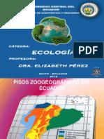Piso Tropical Noroccidental y Suroccidental