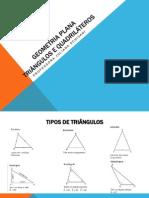 2 GEOMETRIA PLANA - Triangulos e Quadrilateros