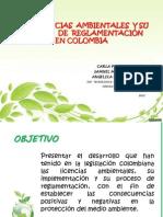 LAS LICENCIAS  AMBIENTALES  Y SU PROCESO DE REGLAMENTACIÓN  EN COLOMBIA