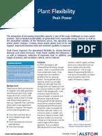 1-3 Peak Power Leaflet