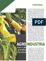 archivos_revista_junio08_portada130_agroindustria.pdf