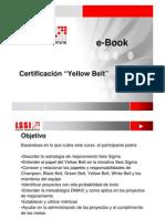 LSSI Yellow Belt (e-Book).pdf