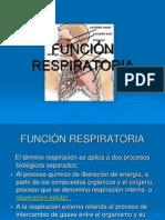 Sistema Respiratorio..ppt