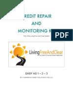 66138337 Credit Repair Kit