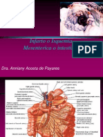 Isquemia Intestinal (1)