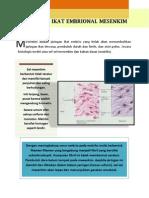 Jaringan Ikat Embrional Mesenkim